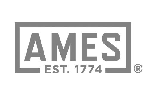Ames Gray