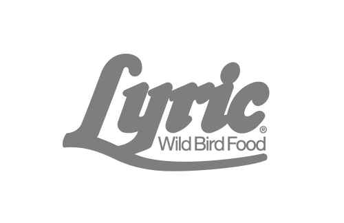 Lyric Gray