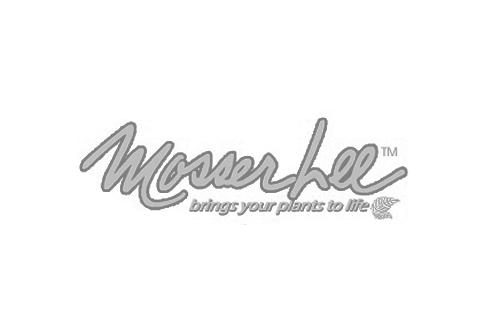 Mosserlee Gray