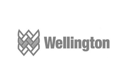 Wellington Gray